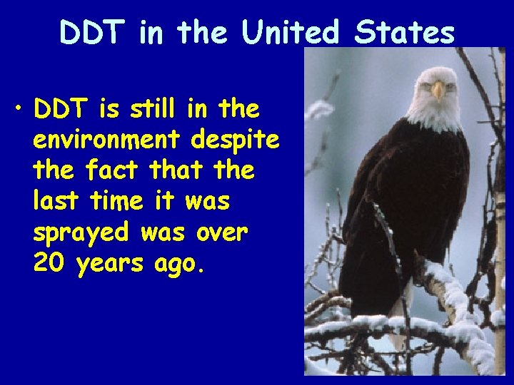 DDT in the United States • DDT is still in the environment despite the