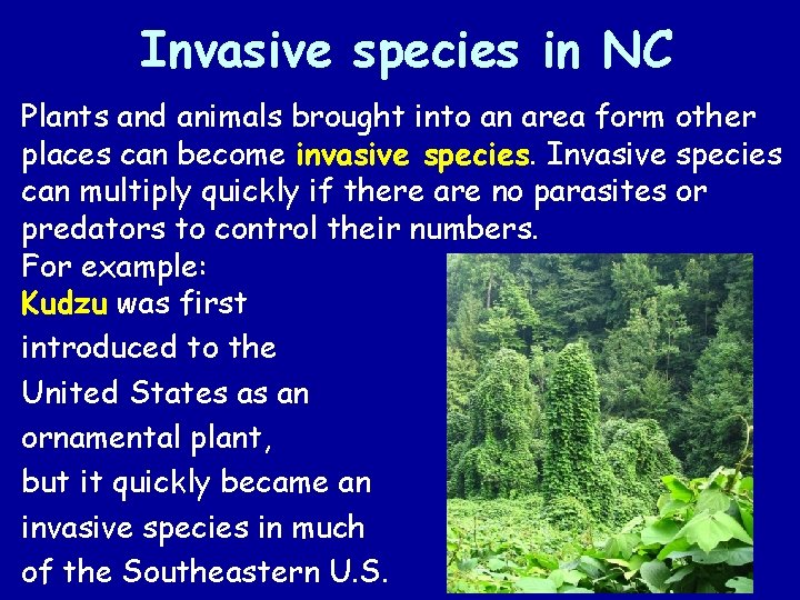Invasive species in NC Plants and animals brought into an area form other places