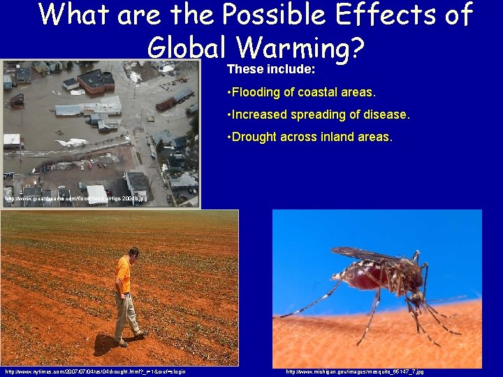 What are the Possible Effects of Global Warming? These include: • Flooding of coastal