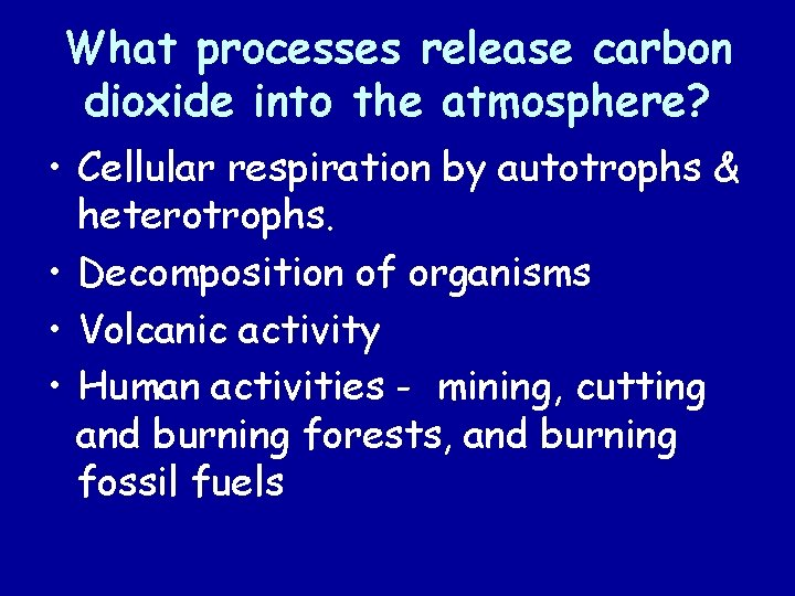 What processes release carbon dioxide into the atmosphere? • Cellular respiration by autotrophs &