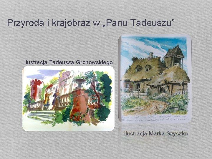 """Przyroda i krajobraz w """"Panu Tadeuszu"""" ilustracja Tadeusza Gronowskiego ilustracja Marka Szyszko"""
