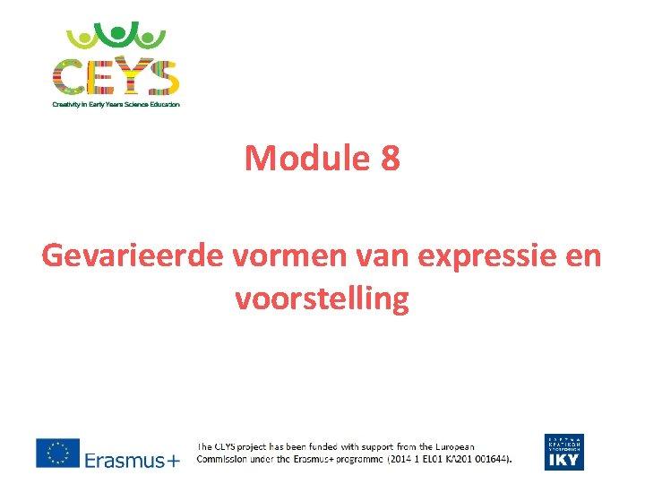 Module 8 Gevarieerde vormen van expressie en voorstelling