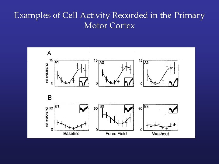 Examples of Cell Activity Recorded in the Primary Motor Cortex