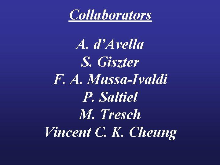 Collaborators A. d'Avella S. Giszter F. A. Mussa-Ivaldi P. Saltiel M. Tresch Vincent C.