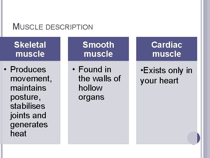 MUSCLE DESCRIPTION Skeletal muscle Smooth muscle Cardiac muscle • Produces movement, maintains posture, stabilises