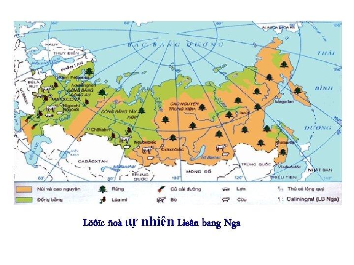 Löôïc ñoà tự nhiên Lieân bang Nga