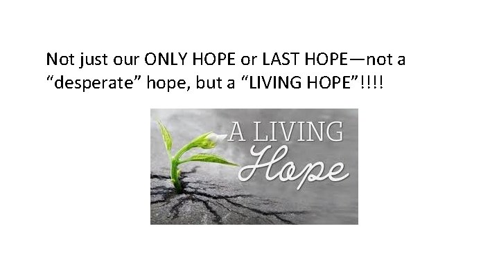 """Not just our ONLY HOPE or LAST HOPE—not a """"desperate"""" hope, but a """"LIVING"""
