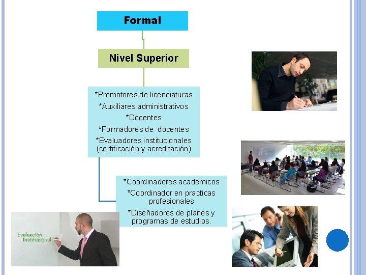 Formal Nivel Superior *Promotores de licenciaturas *Auxiliares administrativos *Docentes *Formadores de docentes *Evaluadores institucionales