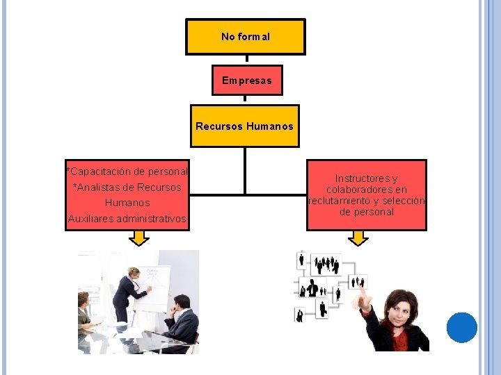 No formal Empresas Recursos Humanos *Capacitación de personal *Analistas de Recursos Humanos Auxiliares administrativos
