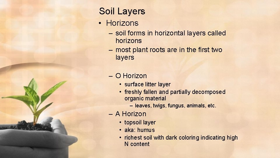 Soil Layers • Horizons – soil forms in horizontal layers called horizons – most