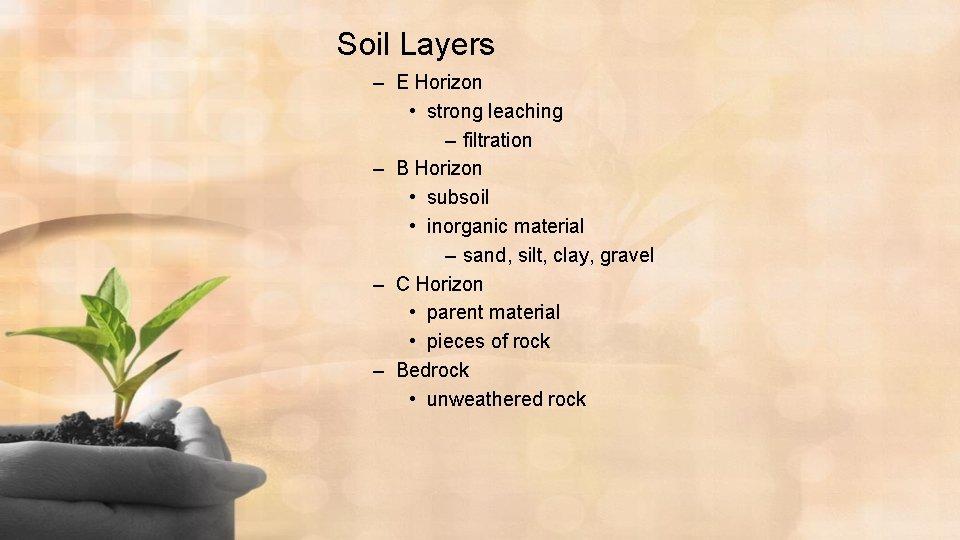 Soil Layers – E Horizon • strong leaching – filtration – B Horizon •