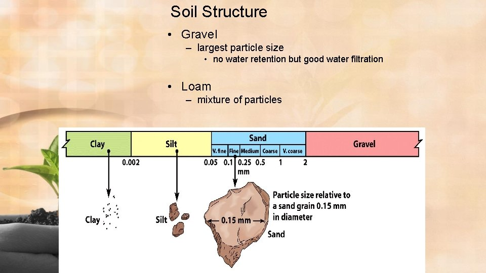Soil Structure • Gravel – largest particle size • no water retention but good