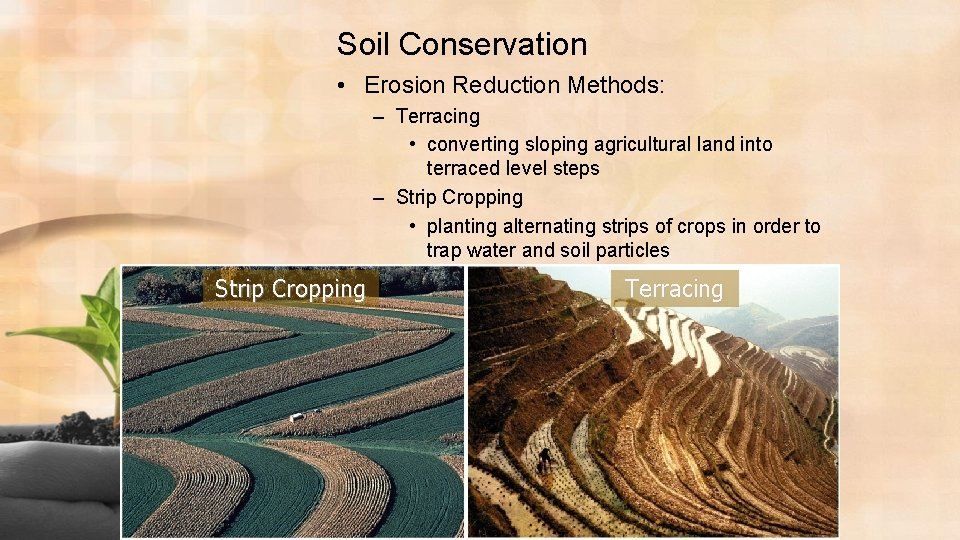 Soil Conservation • Erosion Reduction Methods: – Terracing • converting sloping agricultural land into