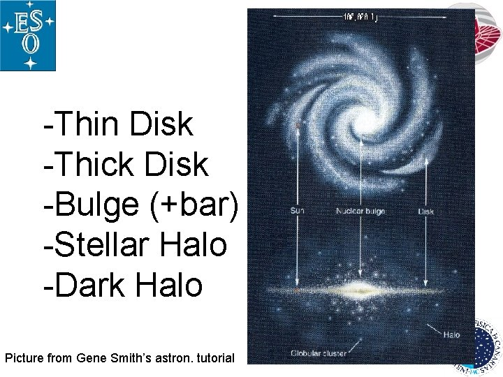 -Thin Disk -Thick Disk -Bulge (+bar) -Stellar Halo -Dark Halo Picture from Gene Smith's