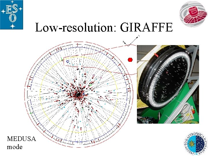 Low-resolution: GIRAFFE MEDUSA mode