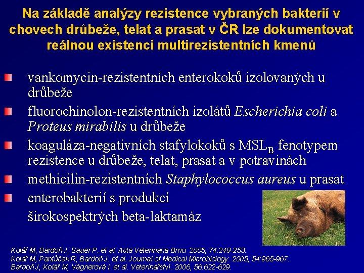 Na základě analýzy rezistence vybraných bakterií v chovech drůbeže, telat a prasat v ČR