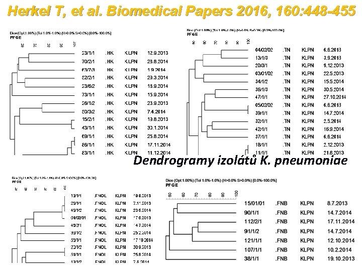 Herkel T, et al. Biomedical Papers 2016, 160: 448 -455 Dendrogramy izolátů K. pneumoniae