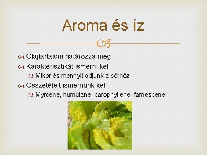 Aroma és íz Olajtartalom határozza meg Karakterisztikát ismerni kell Mikor és mennyit adjunk a