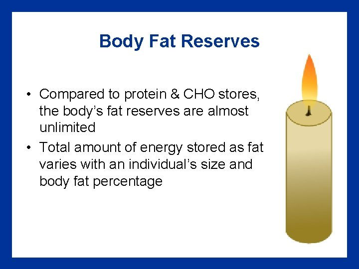 Body Fat Reserves • Compared to protein & CHO stores, the body's fat reserves