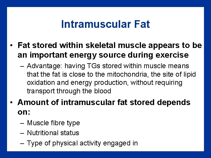 Intramuscular Fat • Fat stored within skeletal muscle appears to be an important energy