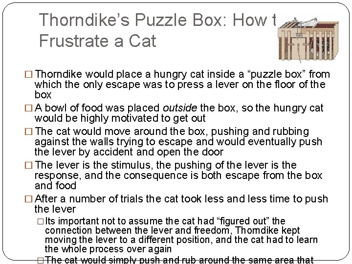 Thorndike's Puzzle Box: How to Frustrate a Cat � Thorndike would place a hungry