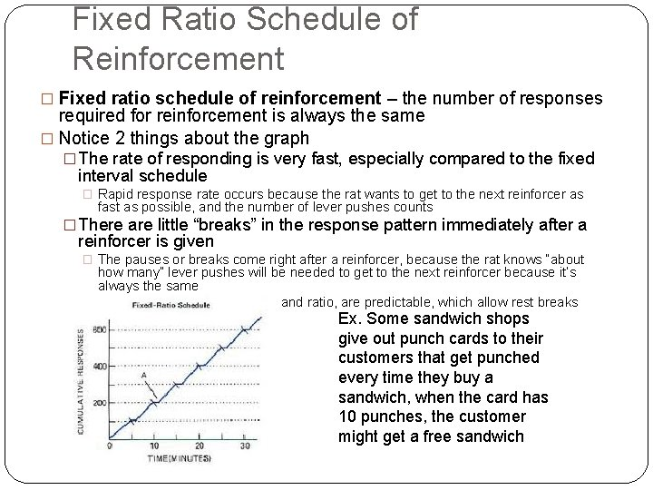 Fixed Ratio Schedule of Reinforcement � Fixed ratio schedule of reinforcement – the number