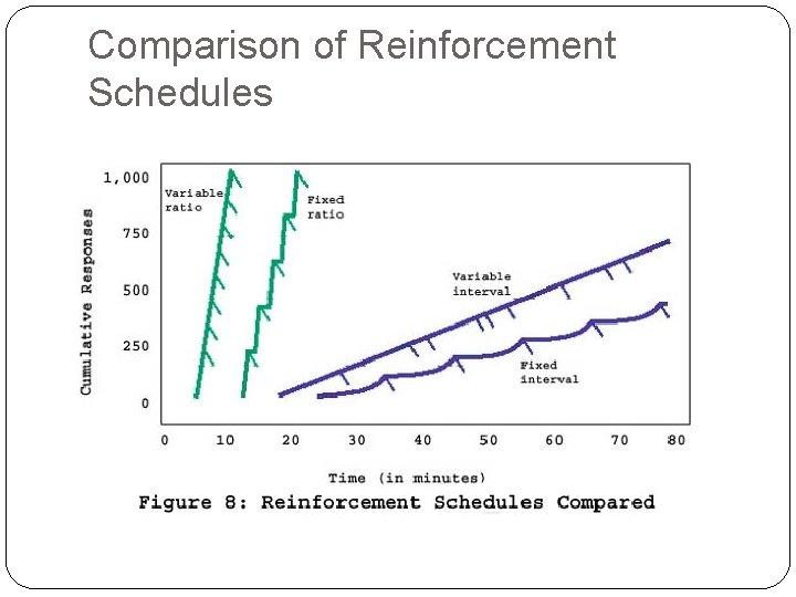 Comparison of Reinforcement Schedules