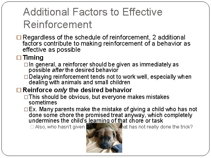 Additional Factors to Effective Reinforcement � Regardless of the schedule of reinforcement, 2 additional