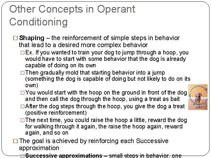 Other Concepts in Operant Conditioning � Shaping – the reinforcement of simple steps in
