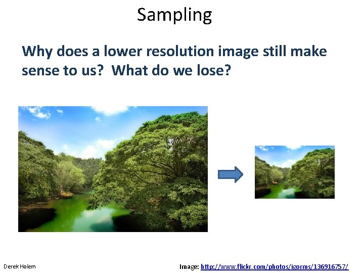 Sampling Why does a lower resolution image still make sense to us? What do