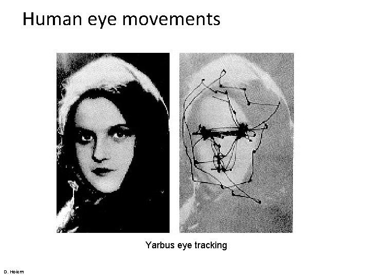 Human eye movements Yarbus eye tracking D. Hoiem