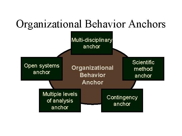 Organizational Behavior Anchors Multi-disciplinary anchor Open systems anchor Organizational Behavior Anchor Multiple levels of