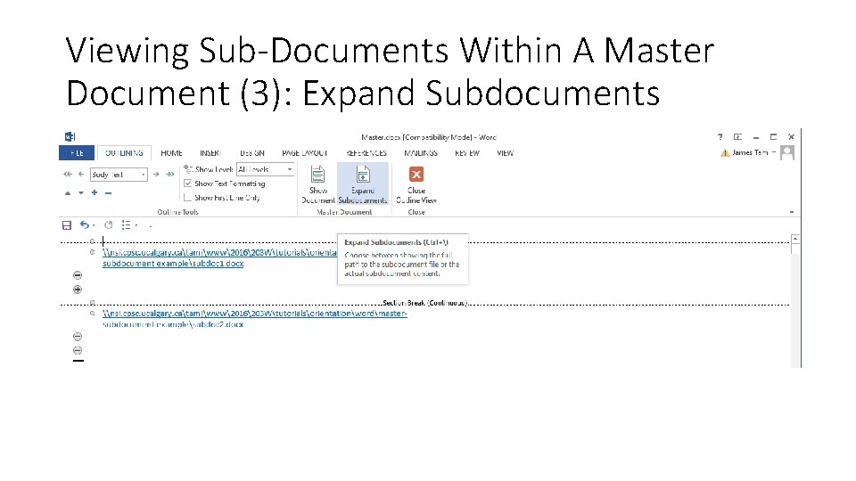 Viewing Sub-Documents Within A Master Document (3): Expand Subdocuments