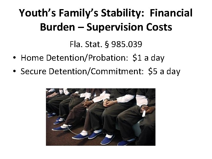 Youth's Family's Stability: Financial Burden – Supervision Costs Fla. Stat. § 985. 039 •