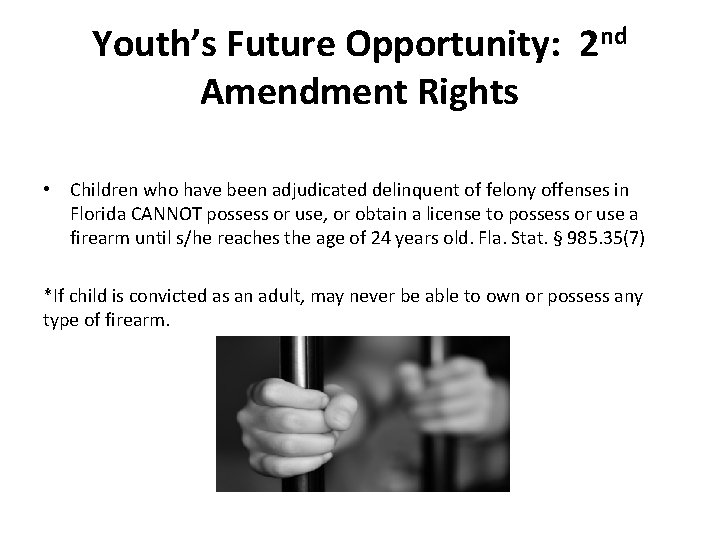 Youth's Future Opportunity: 2 nd Amendment Rights • Children who have been adjudicated delinquent