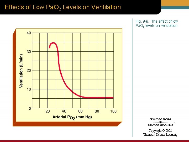 Effects of Low Pa. O 2 Levels on Ventilation Fig. 9 -6. The effect
