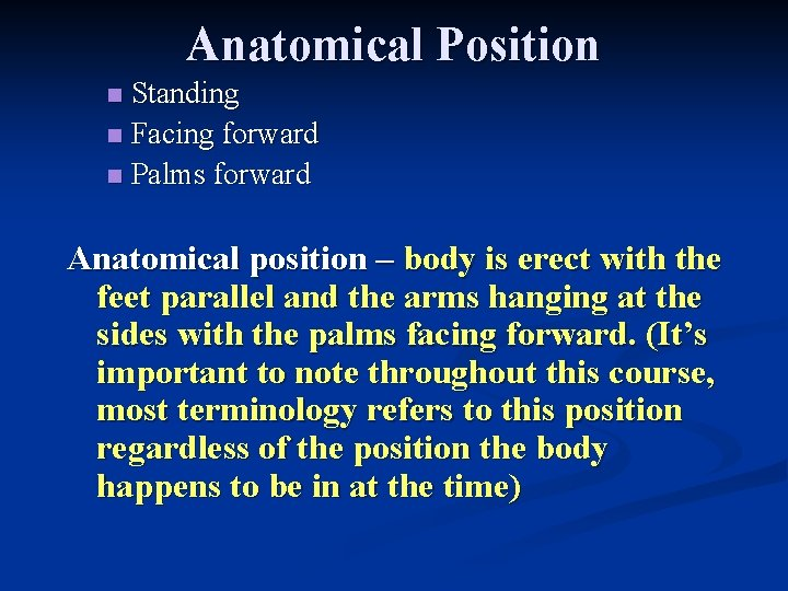 Anatomical Position Standing n Facing forward n Palms forward n Anatomical position – body