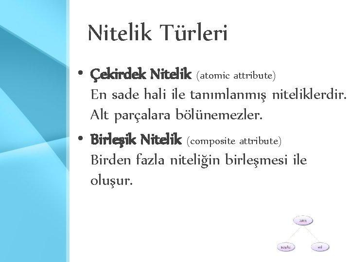 Nitelik Türleri • Çekirdek Nitelik (atomic attribute) En sade hali ile tanımlanmış niteliklerdir. Alt