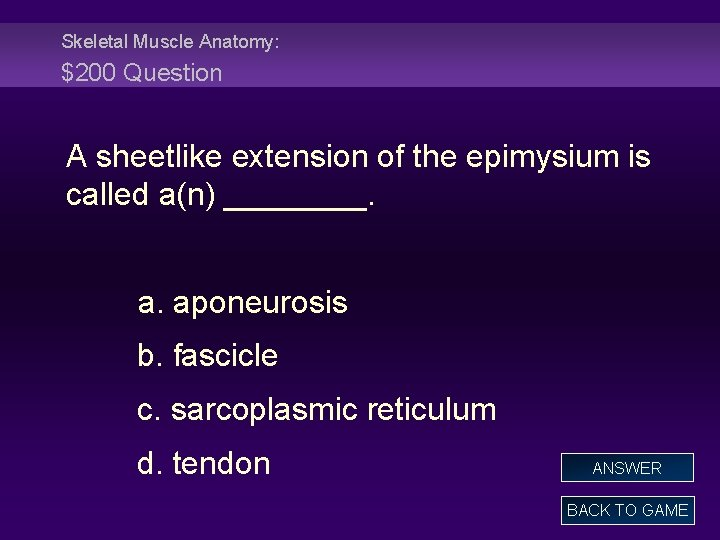 Skeletal Muscle Anatomy: $200 Question A sheetlike extension of the epimysium is called a(n)