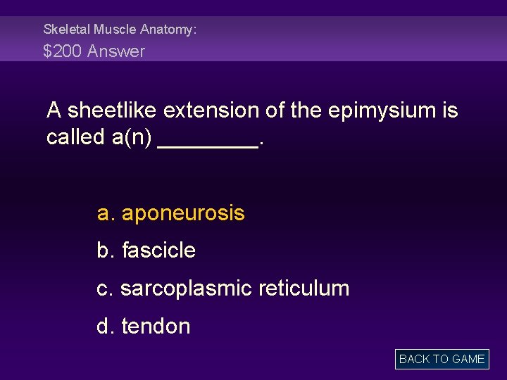 Skeletal Muscle Anatomy: $200 Answer A sheetlike extension of the epimysium is called a(n)