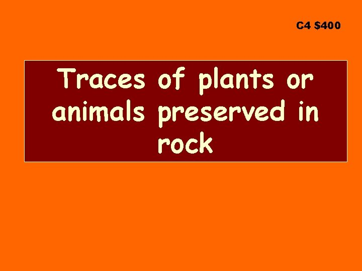 C 4 $400 Traces of plants or animals preserved in rock
