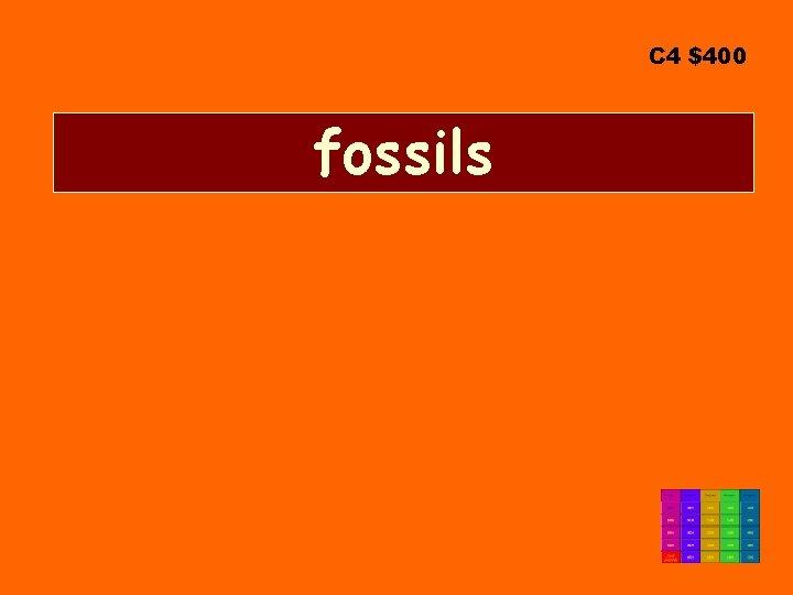 C 4 $400 fossils
