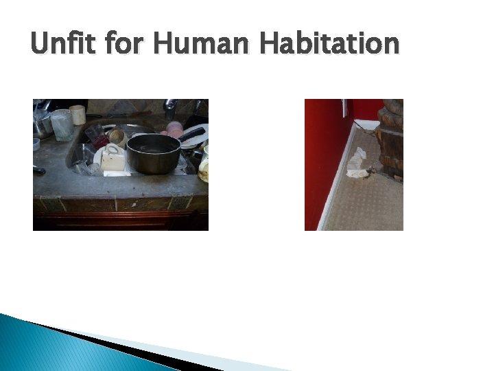 Unfit for Human Habitation