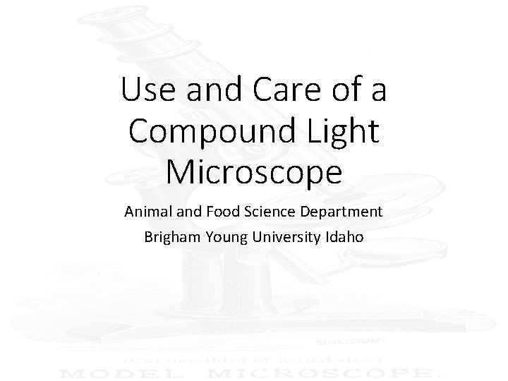 Use and Care of a Compound Light Microscope Animal and Food Science Department Brigham