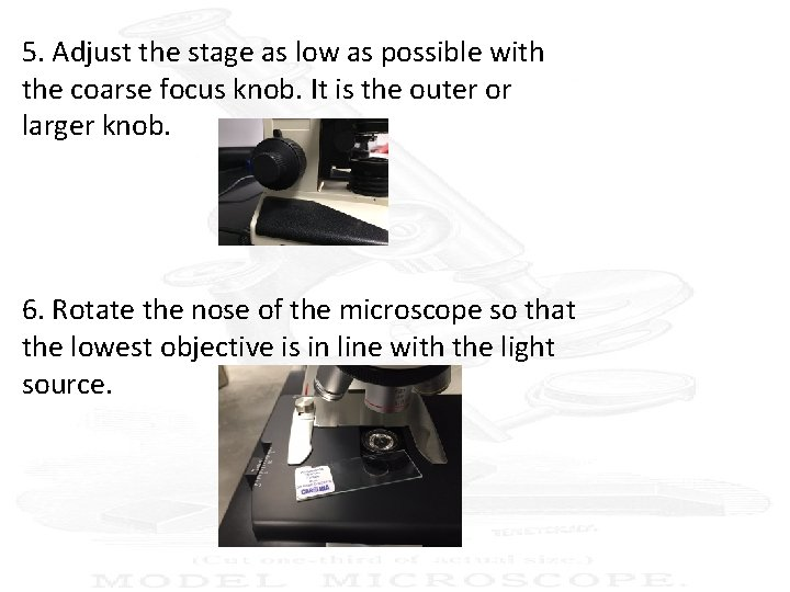 5. Adjust the stage as low as possible with the coarse focus knob. It