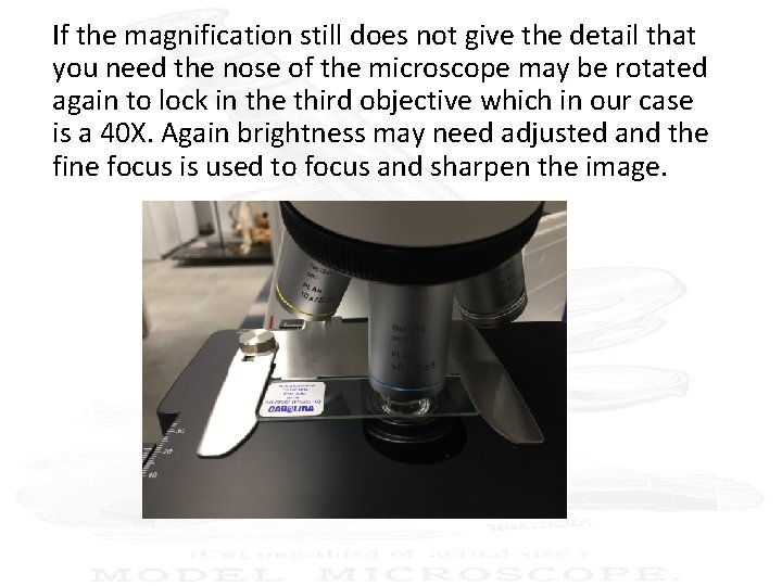 If the magnification still does not give the detail that you need the nose