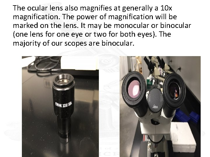 The ocular lens also magnifies at generally a 10 x magnification. The power of