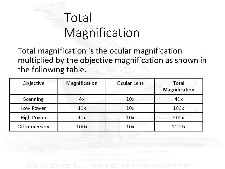 Total Magnification Total magnification is the ocular magnification multiplied by the objective magnification as