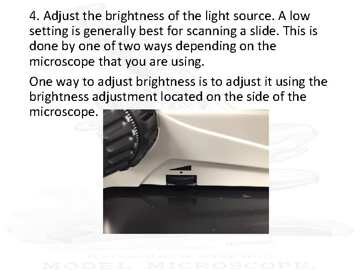 4. Adjust the brightness of the light source. A low setting is generally best