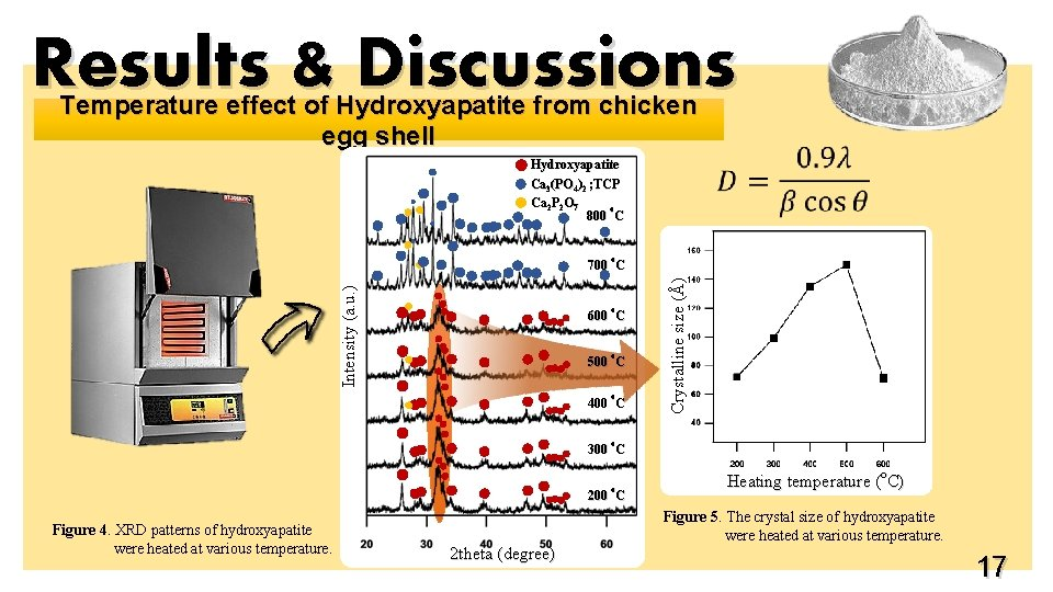 Results & Discussions Temperature effect of Hydroxyapatite from chicken egg shell Hydroxyapatite Ca 3(PO